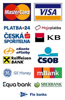 Elektronické platební metody